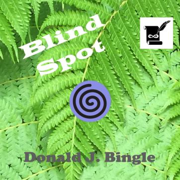 Blind Spot by Donald J. Bingle