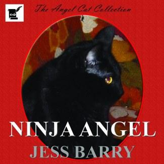 Barry Ninja Angel Square